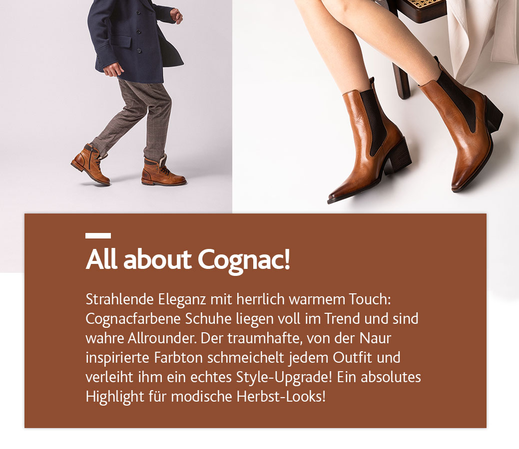 media/image/All-about-cognac-36-21-mobil.jpg